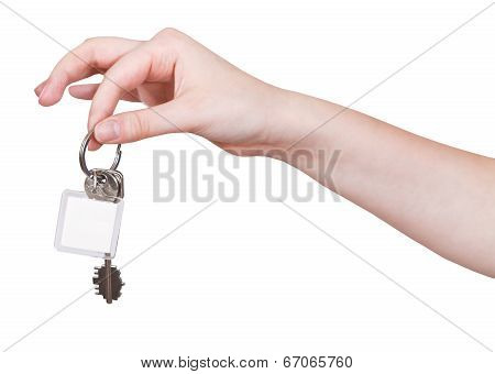 Hand With Keys And Blank Key Fob Isolated