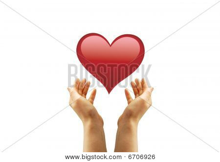 Hand And A Heart