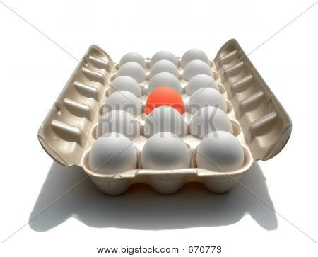 Stand Out - Eggstraordinary Egg