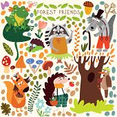 Vector Set of Cute Woodland and Forest Animals. Squirrel frog woodpecker hedgehog wolf raccoon butterfly.(All objects are isolated groups so you can move and separate them) poster