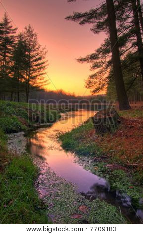 Sunset On A Remote Forest Lake