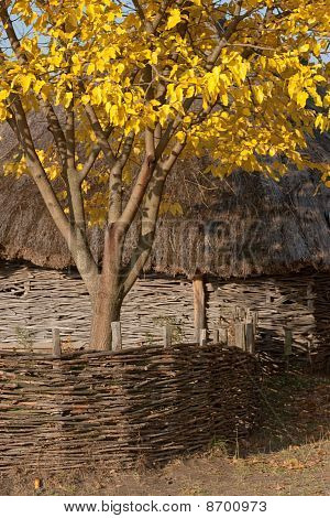 Autumnal Scenery. Hut With Thatched Roof. Wattle.