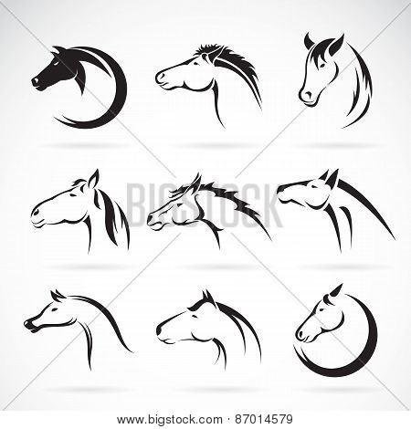 Vector Group Of Horse Head Design On White Background.