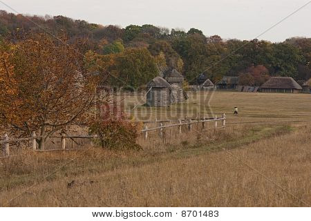 Country Scenery. Fall. The Tree With Red Leaves In The Foreground. Field. Forest In The Background.