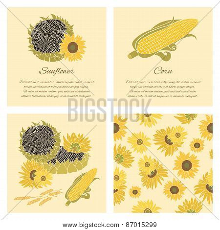 Sunflower And Corn Vector Greeting Card Set On The Bright Background