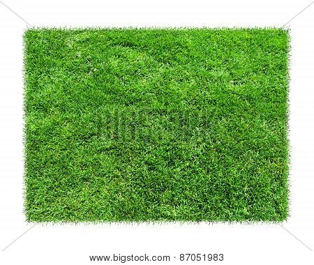Grass Is Green Rectangles On White Background.