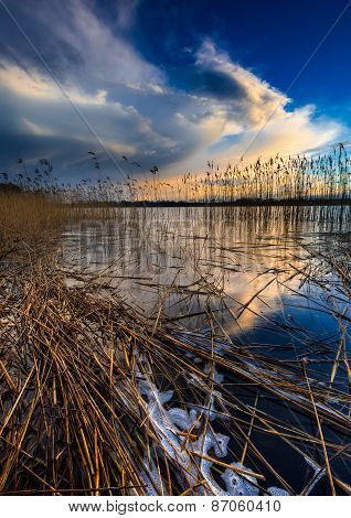 Beautiful sunset over calm lake. Colorful and vibrant landscape of lake shore with reeds. Tranquil landscape useful as background poster