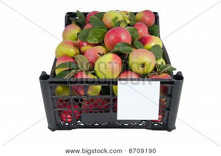 The Box Of Bright Red And Green Apples Isolated Over White