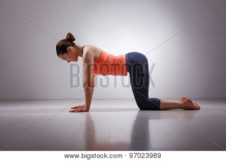 Beautiful sporty fit yogini woman practices yoga asana bitilasana - cow pose gentle warm up for spine (also called cat-cow pose) in studio