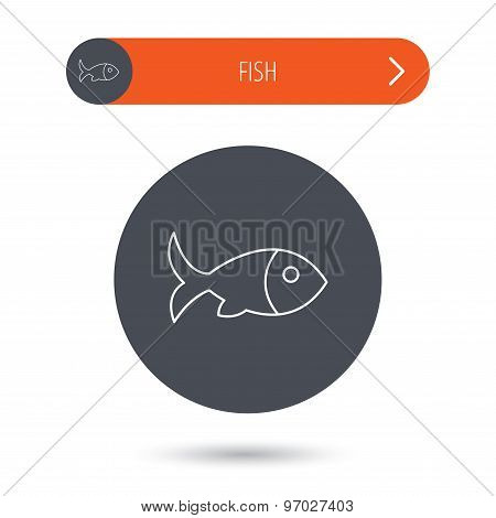 Fish with fin icon. Seafood sign. Vegetarian food symbol. Gray flat circle button. Orange button with arrow. Vector poster