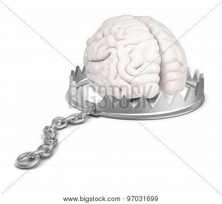 Brain in bear trap