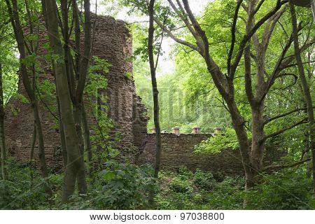 Schweinsburg Castle Ruin