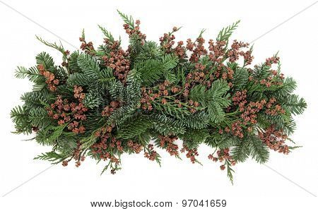 Winter greenery of blue spruce and cedar cypress leyland leaves with pine cones over white background.