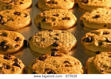 Chocolate Chip Cookies Baking In Oven Using Oven Light