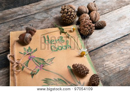 Old book with cones and nuts on table close up