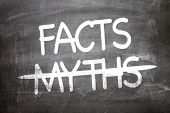 Facts Myths written on a chalkboard poster