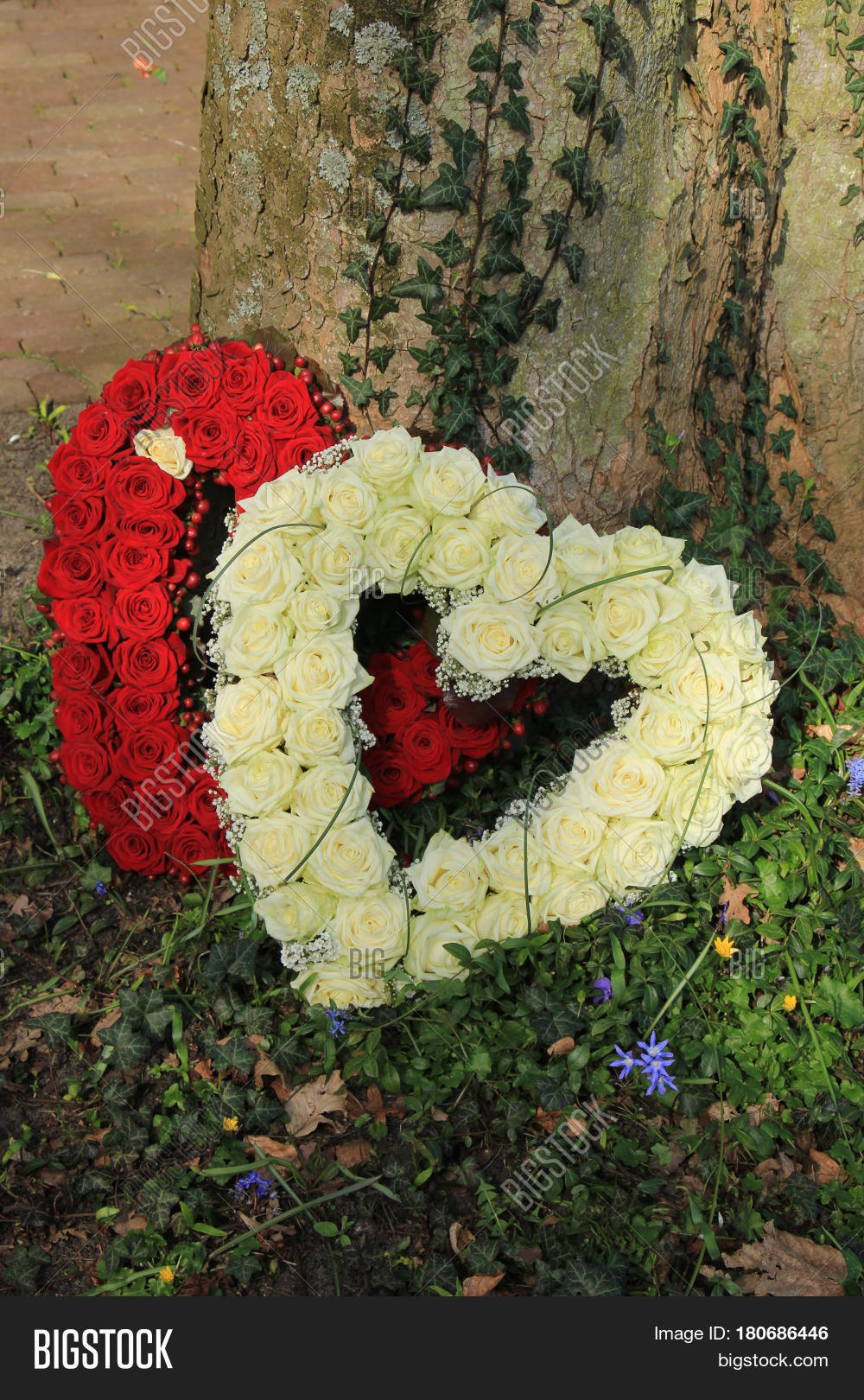 Heartshaped sympathy image photo free trial bigstock heartshaped sympathy flowers or funeral flowers near a tree izmirmasajfo