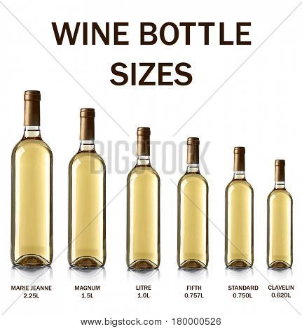 Different wine bottle sizes on white background