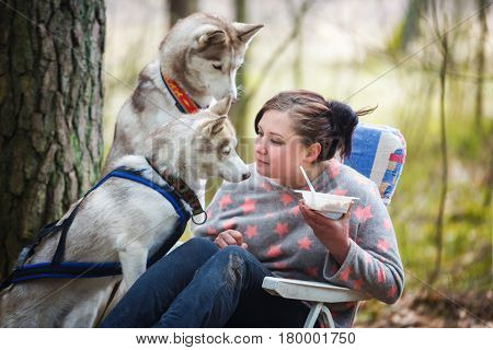 Woman has a lunch after competition but huskies are begging for her food in a spring forest