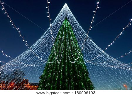 Christmas tree with decoration installed Vilnius Cathedral Square in Lithuania. It has fairy lights as if bridal veiling. Illuminated at night
