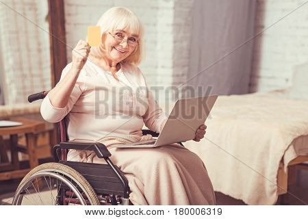 Celebrating first success. Smiling positive enable woman sitting in the wheelchair at home while expressing interest and using laptop