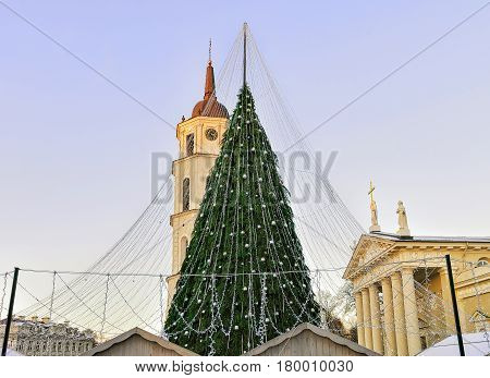 Christmas Tree And Cathedral Bell Tower Vilnius Before Xmas