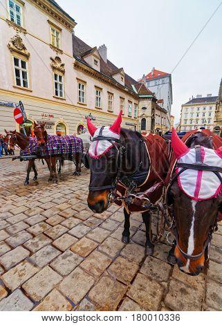 Horse Fiacre At Stephansplatz Of Vienna
