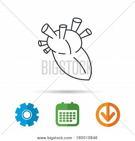 Heart icon. Human organ sign. Surgical transplantation symbol. Calendar, cogwheel and download arrow signs. Colored flat web icons. Vector