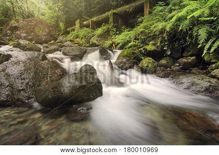 River streams coming from Ditumabo Falls in Baler