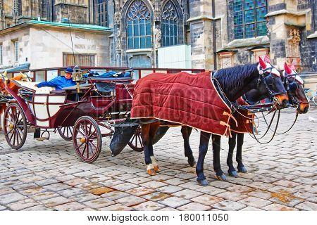 Team Of Horses And Their Coach At Stephansplatz Vienna