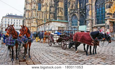 Team Of Horses And Their Coach At Stephansplatz In Vienna