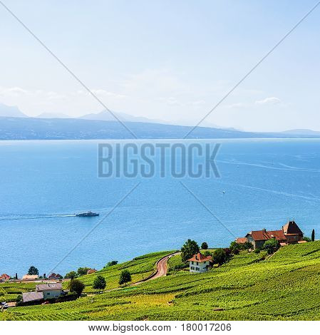 Swiss Houses At Lavaux Vineyard Terrace Hiking Trail Switzerland