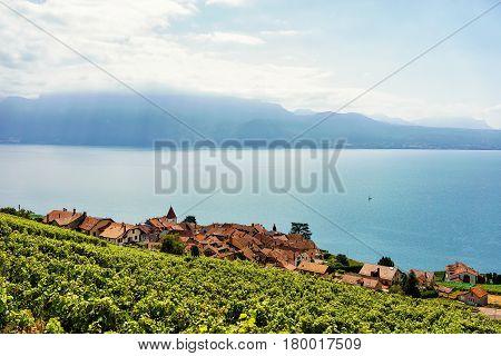 Swiss Village At Lavaux Vineyard Terrace Hiking Trail Switzerland