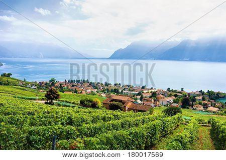 Swiss Village Near Lavaux Vineyard Terrace Hiking Trail Of Switzerland