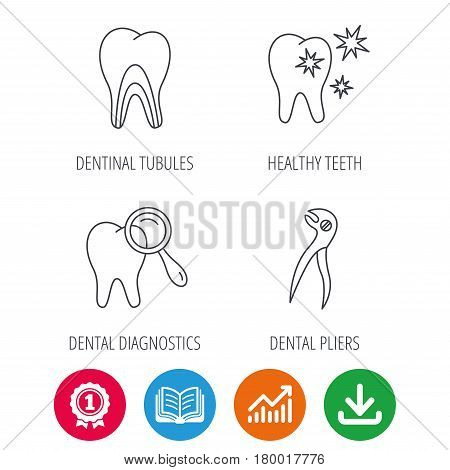 Healthy teeth, dentinal tubules and pliers icons. Dental diagnostics linear sign. Award medal, growth chart and opened book web icons. Download arrow. Vector