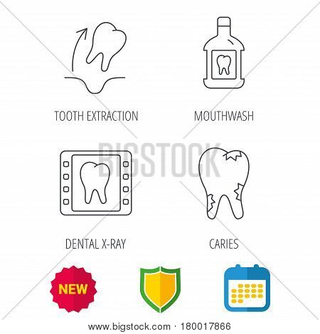 Tooth extraction, caries and mouthwash icons. Dental x-ray linear sign. Shield protection, calendar and new tag web icons. Vector