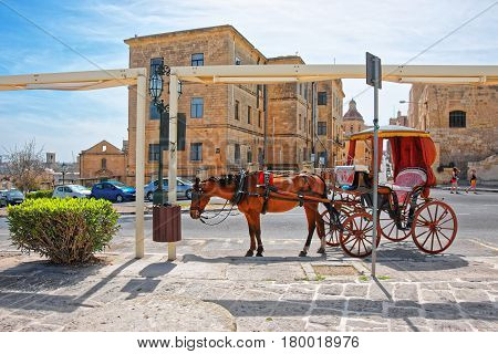 Fiacre In Street And Dome Of Church St Nicholas Valletta