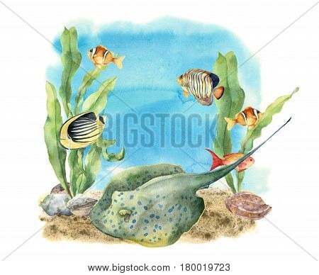 Watercolor tropic sea print. Hand painted tropic fish, seaweeds, stingray, pebbles and seashell isolated on white background. Underwater illustration for design, fabric or print