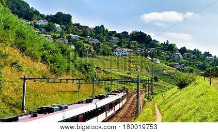Running Train At Lavaux Vineyard Terraces Hiking Trail Of Swiss