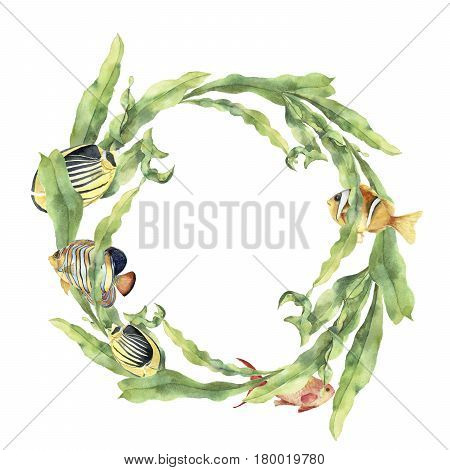 Watercolor sea wreath with laminaria and tropical fish. Hand painted underwater floral illustration with algae leaves branch and animals isolated on white background. Ocean print.