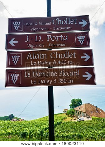 Sign Plates On Vineyard Terraces Trail Of Lavaux Of Switzerland