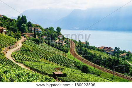 Railroad At Lavaux Vineyard Terraces Lake Geneva In Switzerland