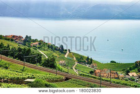 Railroad On Lavaux Vineyard Terraces Lake Geneva In Switzerland