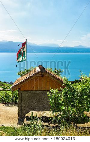 Shelter House With Flag At Vineyard Terraces Lavaux Of Switzerland
