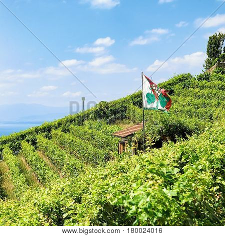 Shelter House With Flag On Vineyard Terraces Lavaux Switzerland