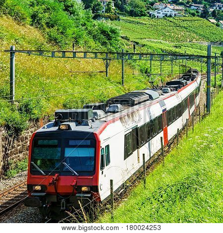 Swiss Running Train At Vineyard Terraces Of Lavaux Switzerland