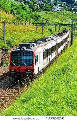 Swiss Running Train At Vineyard Terraces Of Lavaux In Switzerland