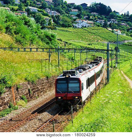 Swiss Running Train In Vineyard Terraces Of Lavaux In Switzerland