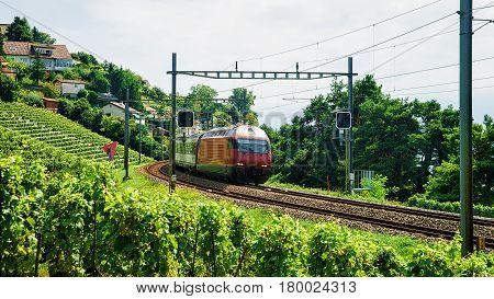 Train And Railroad At Lavaux Vineyard Terrace