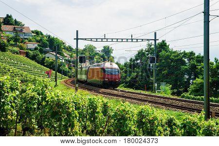 Train At Railroad Lavaux Vineyard Terrace